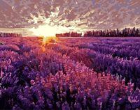 """Картина по номерам """"Закат над лавандовым полем"""" (400х500 мм)"""