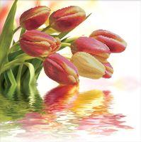 """Вышивка крестом """"Весенние тюльпаны"""" (510х510 мм)"""