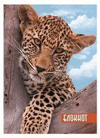 """Блокнот """"Леопард"""" (А6, 120 листов)"""