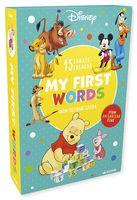 My first words (комплект из 15 развивающих книжек-кубиков)