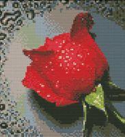 """Вышивка крестом """"Красный бутон"""" (410х270 мм)"""