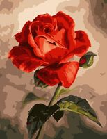 "Картина по номерам ""Фарфоровая роза"" (400х500 мм)"