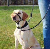 """Шлея тренировочная для собак """"Top Trainer Training Harness"""" (размер XL, 54-66 см, черный, арт. 13006)"""