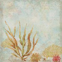 """Бумага для скрапбукинга """"Путешествие. Морские водоросли"""" (310х310 мм; 25 листов)"""