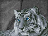 """Алмазная вышивка-мозаика """"Загадочный тигр"""" (475x600 мм)"""