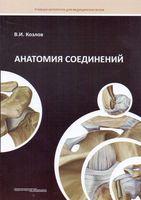 Анатомия соединений