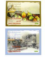 """Альбом для рисования """"Профессиональный"""" (А4; 20 листов; арт. 1-40-236)"""