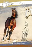 "Скетчбук ""Лошадь на песке"" (А4)"