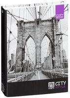 "Тетрадь на кольцах в клетку ""City Style"" (А5; 160 листов)"