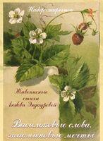 Васильковые слова. Жасминовые мечты (набор из 15 открыток)