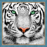 "Алмазная вышивка-мозаика ""Портрет белого тигра"" (250х250 мм)"
