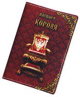 Обложка на паспорт (арт. C1-17-774)