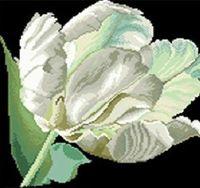 "Алмазная вышивка-мозаика ""Белый тюльпан"" (400х400 мм)"