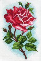 """Канва с нанесенным рисунком """"Роза Осирия"""""""