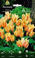 """Тюльпан Грейга многоцветковый """"Квебек"""""""