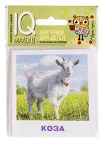 Домашние животные. Набор карточек