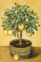 """Вышивка бисером """"Апельсиновое дерево"""""""