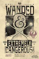"Постер ""Fantastic Beasts. Extremely Dangerous"""