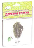 Деревья России. Карточки для развития ребенка