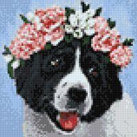"""Алмазная вышивка-мозаика """"Неотразимая собака"""" (200х200 мм)"""