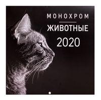 """Календарь настенный перекидной на 2020 год """"Монохром. Животные"""" (30х30 см)"""