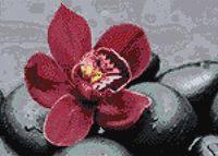 """Алмазная вышивка-мозаика """"Королевская орхидея"""" (270х380 мм)"""