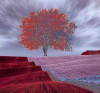 """Вышивка бисером """"Красное дерево"""" (360х340 мм)"""