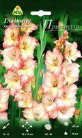 """Гладиолус крупноцветковый """"Присцилла"""""""