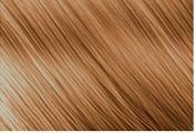 """Крем-краска для волос """"Nouvelle"""" (тон: 8.31, золотистый пепельный светло-русый)"""