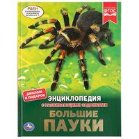 Энциклопедия с развивающими заданиями. Большие пауки