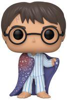 "Фигурка ""Harry Potter. Harry in Invisibility Cloak"""