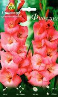 """Гладиолус крупноцветковый """"Фиделио"""""""