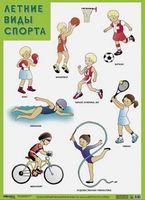 Развивающие плакаты. Летние виды спорта