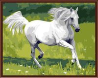 """Картина по номерам """"Грациозная лошадь"""" (400х500 мм)"""
