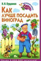 Как лучше посадить виноград
