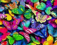 "Алмазная вышивка-мозаика ""Разноцветные бабочки"" (380х480 мм)"