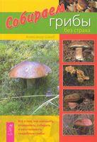 Собираем грибы без страха