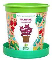 """Набор для выращивания растений """"Базилик фиолетовый"""""""