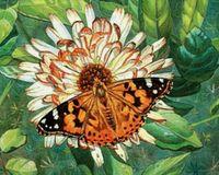 """Алмазная вышивка-мозаика """"Бабочка на цветке"""""""