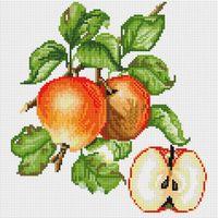 "Алмазная вышивка-мозаика ""Яблочки"" (300х300 мм)"