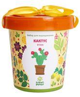 """Набор для выращивания растений """"Кактус Егоза"""""""