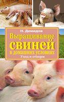 Выращивание свиней в домашних условиях. Уход и откорм