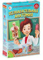"""Набор для творчества """"Познавательная анатомия"""""""