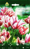 """Тюльпан простой поздний многоцветковый """"Флеминг Клаб"""""""