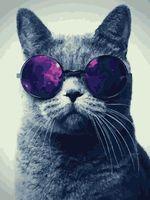 """Картина по номерам """"Кот в очках"""" (400х500 мм)"""