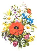 """Вышивка лентами """"Полевые цветы"""" (200х300 мм)"""