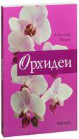 Орхидеи (м)