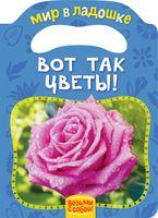 Вот так цветы!