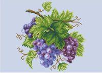"Канва с нанесенным рисунком ""Виноград"""