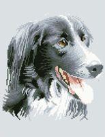 """Канва с нанесенным рисунком """"Собака"""" (арт. А-1494)"""